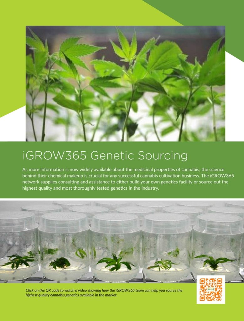 http://igrow365.com/wp-content/uploads/2016/09/igrow365_greenhouse_14-779x1024.jpg
