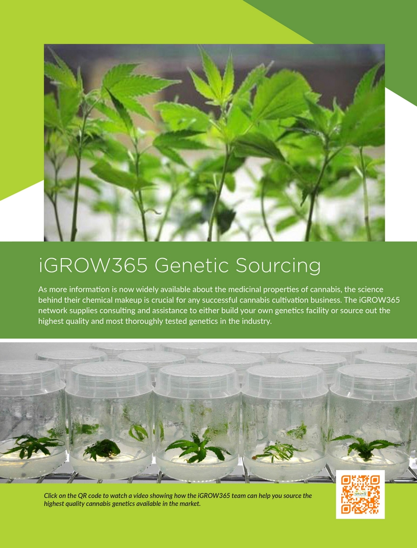 igrow365_greenhouse_14